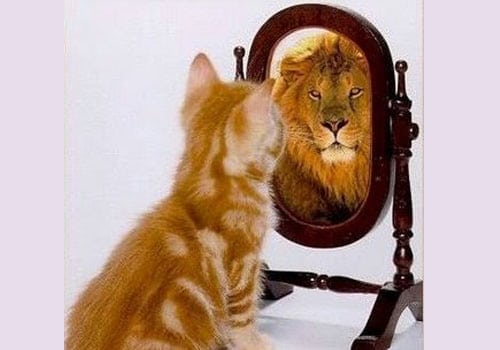 The Power of Self-Image