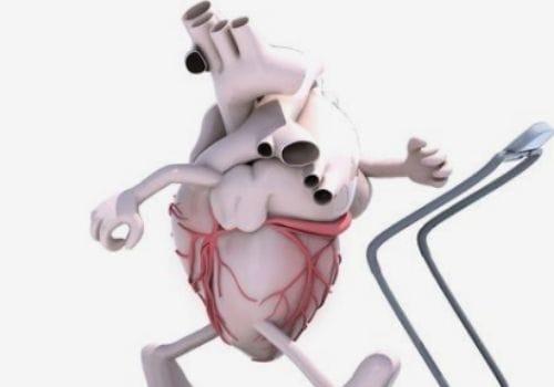 Improve Blood Pressure and Cholesterol