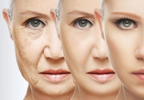 Anti-Ageing Qualities
