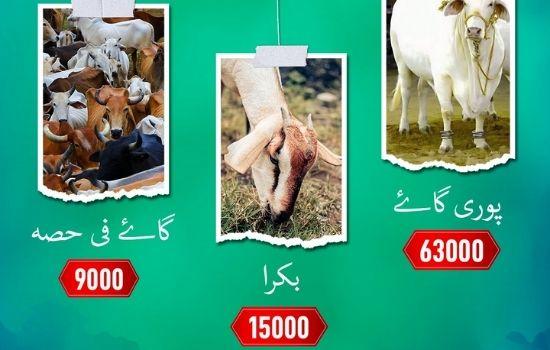Edhi Foundation Eid Ul Adha 2021
